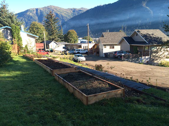 Newly built raised beds at the Douglas Fruiting Forest