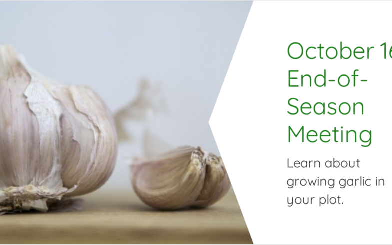 End-of-Season Meeting & Garlic Growing